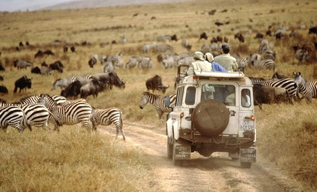 Travel To Africa With A Purpose with The Royal Portfolio